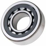 One Way Original Germany Cylindrical Roller Bearing N NU NJ NUP 202 203 2203 303 204 2204 304 ECP Bearing With High Quality